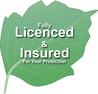 Fully Licensed & Insured For Your Protection